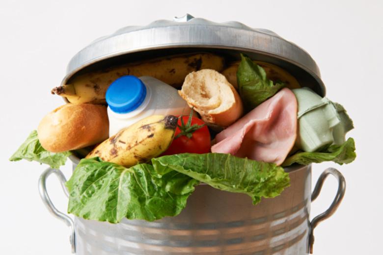 foodsharing, lebensmittelverschwendung, food waste, wegwerfgesellscahft