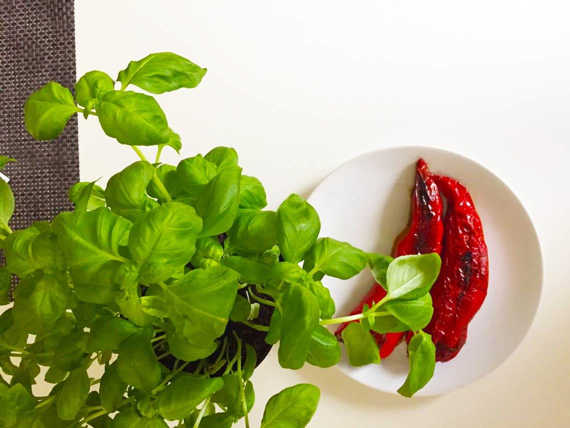 Gefüllte Paprika mit Hackfleisch oder vegan | Das Rezept